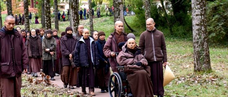 2016-10-Autumn-Lower-Hamlet-Thay-Walking-Meditation-1-1