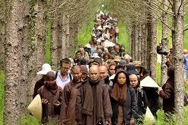tnh walkingmeditation